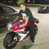 fling profile picture of KingStallion