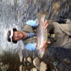 fling profile picture of 9697Boatman